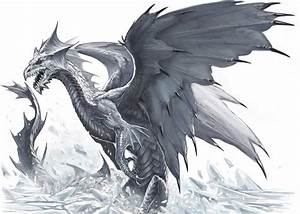 Black And White Images Of Dragons 25 Background ...