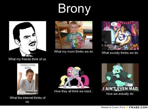 Brony Meme - brony perception vs fact other fan works mlp forums