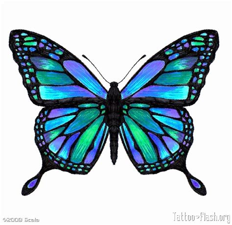 butterfly tattoo extension  tattoos colorful
