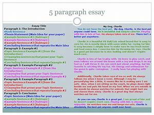 Spanish Essays About Family Pay To Get Critical Analysis Essay On  Spanish Essay About Family Essay My Family English also Reflection Paper Example Essays  Essay Paper Writing