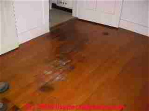 Urine Ruining Hardwood Floors by Wood Floor Types Damage Diagnosis Repair Damaged Wood