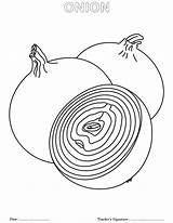 Onion Coloring Pages Onions Getdrawings Cp sketch template