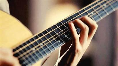 Acoustic Guitar Animated Instruments Guitars Gifs