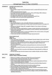 lead consultant resume samples velvet jobs With netsuite consultant resume