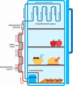 How Refrigerator Works  - Easiest Explanation