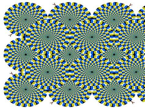 illusions jenny read