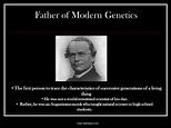 Gregor Mendel - Presentation Genetics - SliderBase