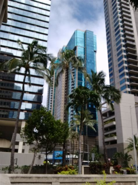 top family lawyer  downtown honolulu