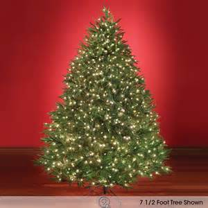 the world s best prelit fraser fir 7 5 full led artificial christmas tree ebay