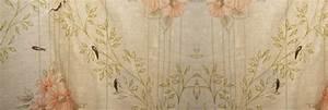 Wie Entsteht Ein Silberfisch : insekten archive sch dlingsbek mpfung dresden ~ Markanthonyermac.com Haus und Dekorationen