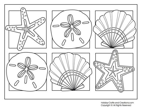 beach shells coloring pages   print
