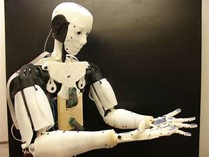 Inmoov  The First Humanoid Robot That You Can Print At