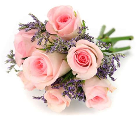 flowers same day delivery 7 pink rosses flori in constanta ro flowers and gifts
