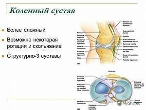 Питание при артрозе 3 степени коленного сустава лечение