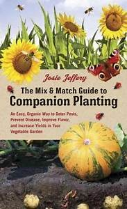 The Mix  U0026 Match Guide To Companion Planting  An Easy