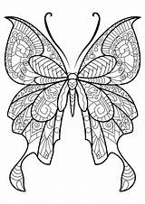 Coloring Butterflies Simple Children Pages Animals sketch template