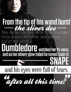 34 best Snily images on Pinterest | Harry potter stuff ...