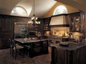 best kitchen designs redefining kitchens top kitchen design trends for 2011 the house designers