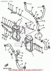 Yamaha Yz125 1985  F  Usa Radiator - Hose