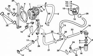 Evinrude Vro Pump Parts For 1985 150hp E150txcos Outboard