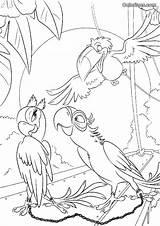 Florges Coloriages Coloring Ws Credit Larger sketch template