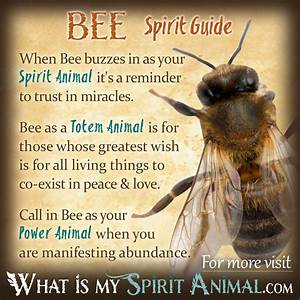 Bee Symbolism & Meaning | Power animal, Totems and Bees