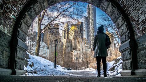 york   central park  winter hd wallpaper