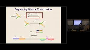 Practical Guide To Rna Sequencing