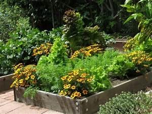 Mischkultur Im Garten : anbau von nutzpflanzen in mischkultur giftfreies g rtnern ~ Orissabook.com Haus und Dekorationen