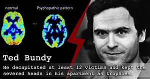 Do You Know What Actually Motivates Serial Killers to ...