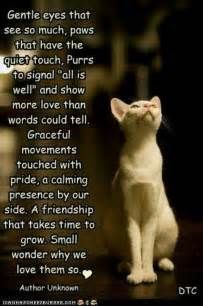 quotes and poems about cats quotesgram