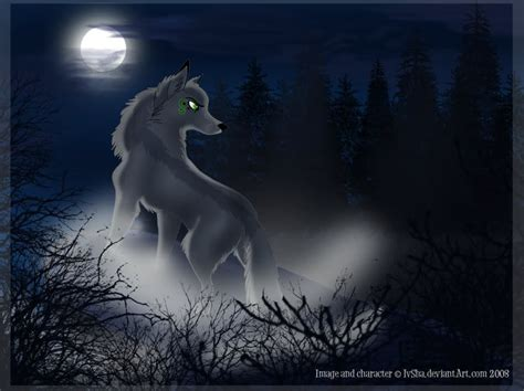 wolf anime wallpapers 41 4k wallpapers for free