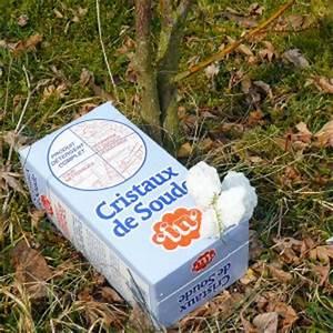 Nettoyer Canalisation Avec Cristaux De Soude : bicarbonate de soude et carbonate de soude qu 39 ont ils en commun ~ Melissatoandfro.com Idées de Décoration
