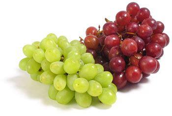 classement cuisine du monde conservation raisin chiche pois