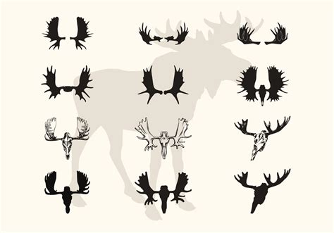 Moose Horn Clipart Clipground