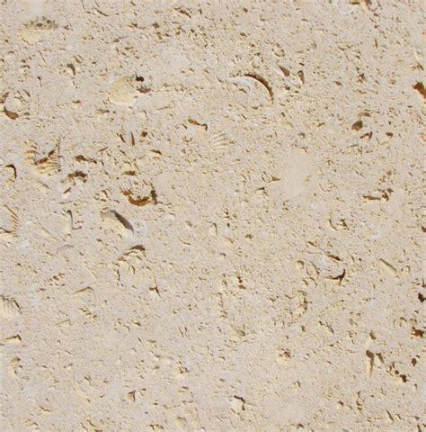 Shell Limestone Tile by Continental Cut Cordova Shell