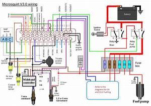 Bosch Wideband O2 Sensor Wiring Diagram