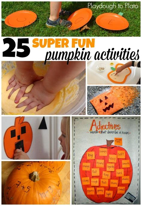 11 best images about cycle of a pumpkin on 416 | 20ac20267678810ded28b8c55f12ad15