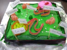 plant cell cake model the plant cell s amazing