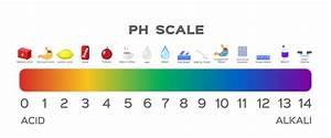 Ph Of The Mouth Ph Of The Mouth