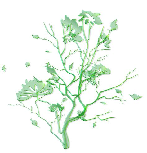 green floral ornament png clipart gallery yopriceville