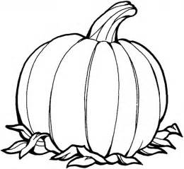Spookley The Square Pumpkin Book Pdf by Printable Pumpkin Coloring Pages Fall Printable Kids