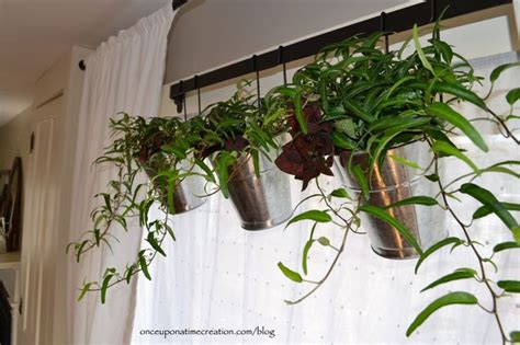 Plant Window by Quot Houseplant Quot Valance Plant Scapes Kitchen Window