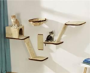 Arbre À Chat Mural : 7 conseils pour faire maigrir son chat 2 me partie ~ Melissatoandfro.com Idées de Décoration