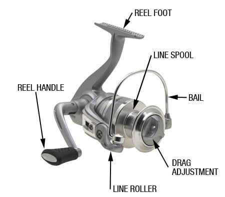 spinning reel   money  reviews