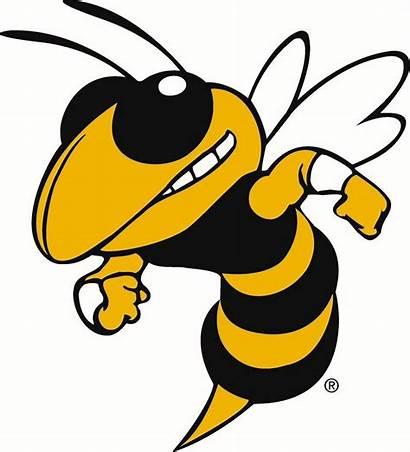 Svg Georgia Yellow Tech Hornet Spirit Jackets