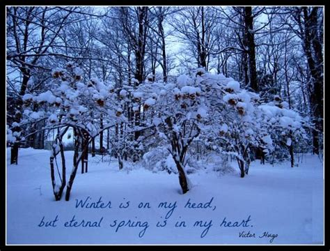 snowfall status whatapp 1000 images about winter quotes on seasons snowflakes and you think