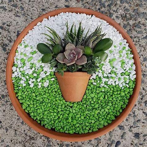 56 Unique Gorgeous Succulent That Make A Big Difference