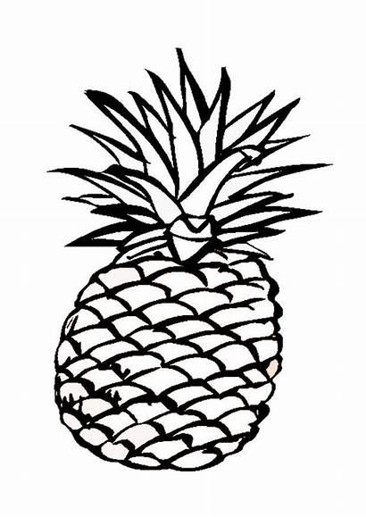 Kleurplaat Ananas Grote Afbeelding