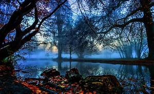 Trees, River, Hd, Wallpapers, Desktop, And, Mobile, Images